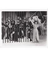 Lucille Ball Cats 8x10 Photo 1024000 - $9.99