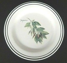 """Williams Sonoma 8 1/2"""" Salad Plate Cayenne Herbs Made in Portugal  - $6.92"""