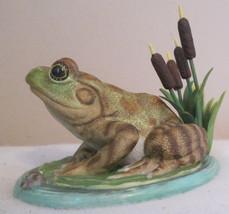 Lenox Porcelain Skunk, Frog, Turtle, Owl (4 Choices) - $36.56+