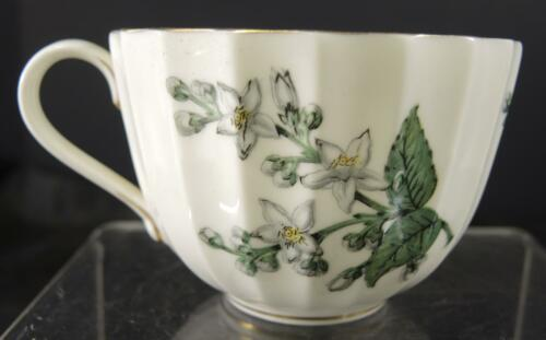 Royal Worcester Tea * Coffee Cup * Valencia Pattern image 3