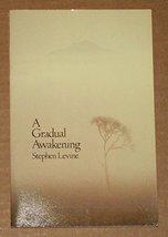 A Gradual Awakening Levine, Stephen - $9.89