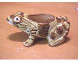 Brushfrog1 thumb155 crop