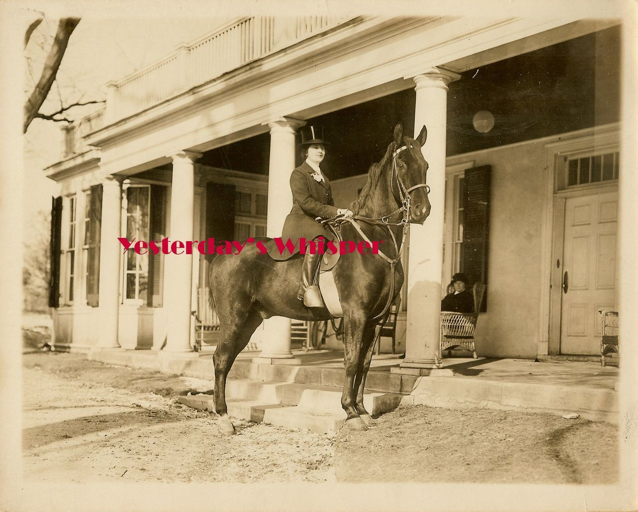 c.1916 Beverly Bayne Horse Metro Bushmanor DW Photo