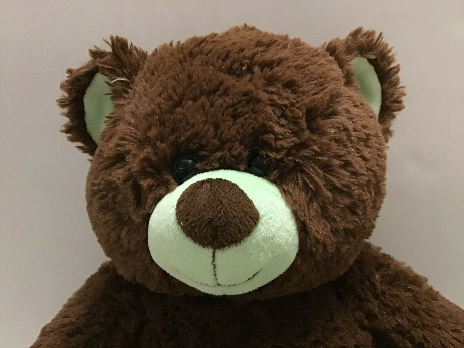 Build A Bear Girl Scout Cookies Thin Mints Plush Bear 14 Inch BABW Teddy
