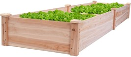 Wooden Vegetable Spices Flowers Lifted Raised Garden Bed Yard Bedding St... - €69,51 EUR