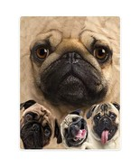 SXCHEN Blankets Plush Sofa Bed Throw Blanket Funny Pug Dogs Pet Animal 5... - $37.78