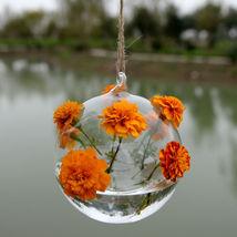 Terrarium Container  Transparent Home Garden Clear Glass Home Decor Styl... - $11.99