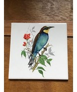 Vintage Made in Germany Blue & Yellow Bird Perched on Branch w Red Flowe... - $8.59