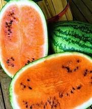 Organic Heirloom Orange Tendersweet Watermelon - $4.95