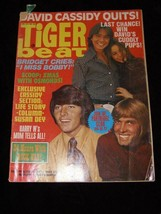Tiger Beat January 1971 Partridge Family Bobby Sherman Brady Bunch and more - $24.99