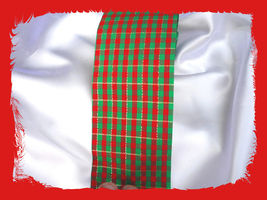 Red n Green Plaid Acetate Ribbon - $4.00