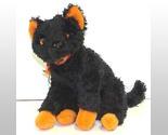 Catbeanie 1 thumb155 crop