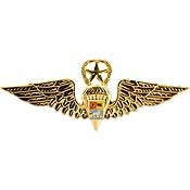 "Venezuelan Master Jump Wing Badge Pin (3"")"