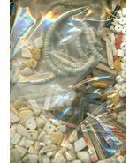 Sea Shell Beads Grab Bag 1 - $15.99