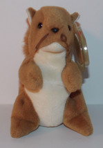 Ty Beanie Baby Nuts Plush Squirrel 5in Stuffed Animal Retired with Tag 1996 - $3.99