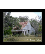 This Old House - Fine Art Print - $17.50