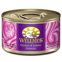 Wellness Complete Health Chicken & Lobster Formula Canned Cat Food - $59.99+