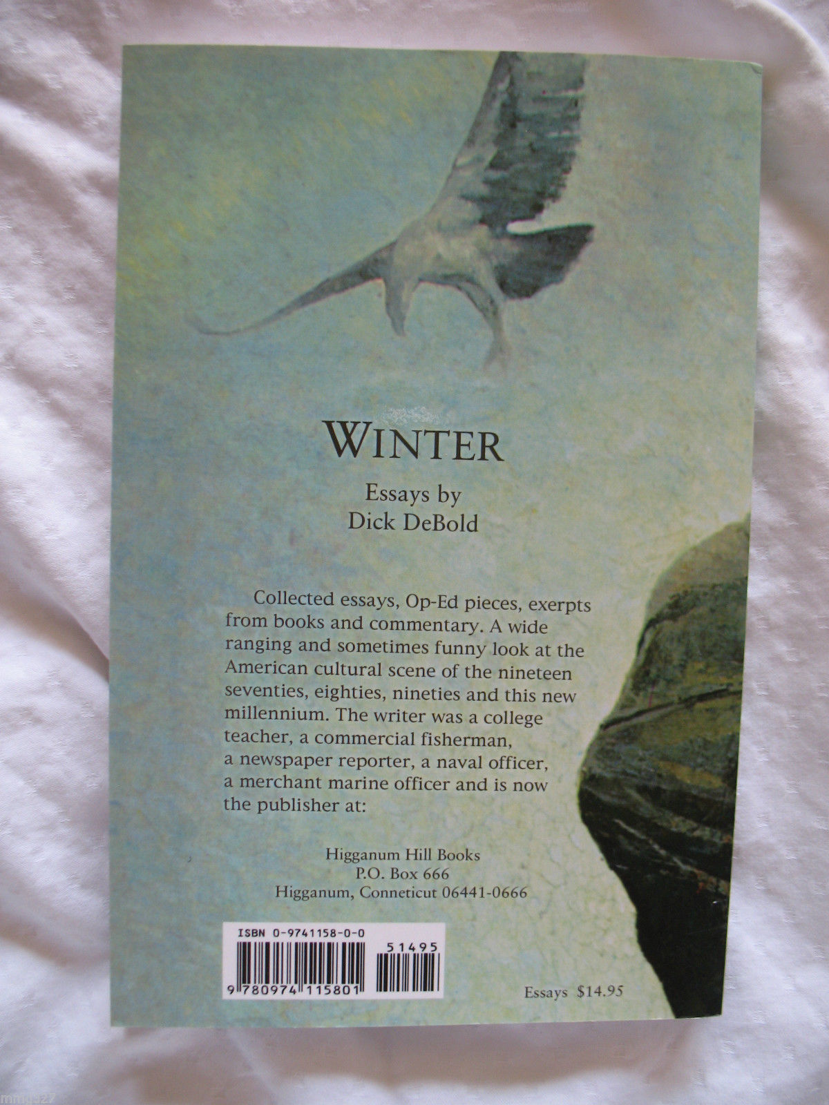 Winter Essays Paperback New by Dick DeBold Mint American Cultural Criticism image 2