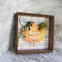 """Fall Decor Plaque, live air plants, Wooden shadow box, autumn leaf """"Happy Fall"""" image 5"""