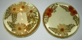 Vintage Lucite Acrylic Coaster Pot Holder Trivet Mid Century Real Flower... - $32.68