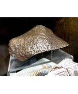 METEORITE PIRATE GOLD COINS TREASURES OF SPACE METEOR CRATER ARTIFACT - $6,800.00