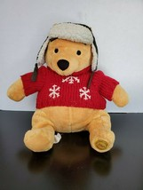 Walt Disney Store Winnie the Pooh with sweater and hat - $13.69