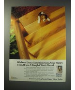 1991 Purina Puppy Chow Ad - your puppy could face tough climb - $14.99