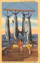 Marlin Swordfish Fishing Catch Catalina Island California linen postcard - $6.44