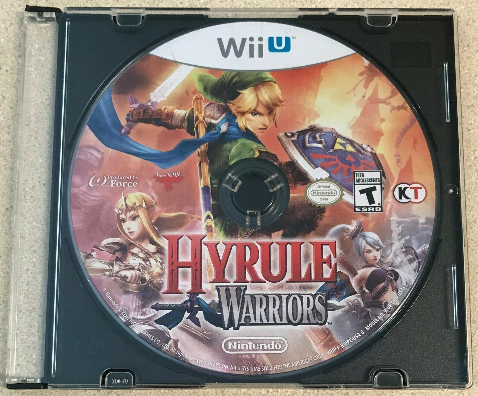 Hyrule Warriors (Nintendo Wii U, 2014) Game