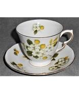 Queen Anne BONE CHINA - FLORAL & FRUIT Cup/Saucer Set GOLD TRIM - $19.79
