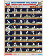 Posters JUDO. Brown   belt  1 poster.The technique of judo. - $13.93