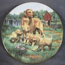 Golden Retrievers Collector Plate Classic Sporting Dogs Robert Christie ... - $17.95