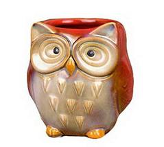 Set of 2 Cute Owl Shape Home Decor Storage Pot Little Ornament(Red)9.510.5cm