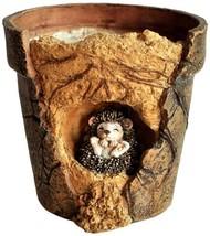 Top Collection Miniature Fairy Garden and Terrarium Baby Hedgehog Functi... - $21.10