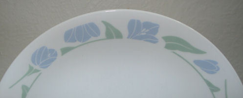 Corelle Friendship 8.5 inch Luncheon or Salad Plate