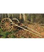 Beautiful Amish-Built Raber Single Horse Cart - Rare - Pickup North Cent... - $940.50