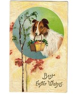 1908 Easter - Collie Dog with Basket POSTCARD - $9.00