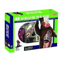 4D Master Vision Bear Anatomy Model Kit, Brown by 4D Master - $16.82