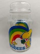 Peanuts Snoopy & Woodstock Rainbow Cookie Jar Goodies Glass Jar - $19.79