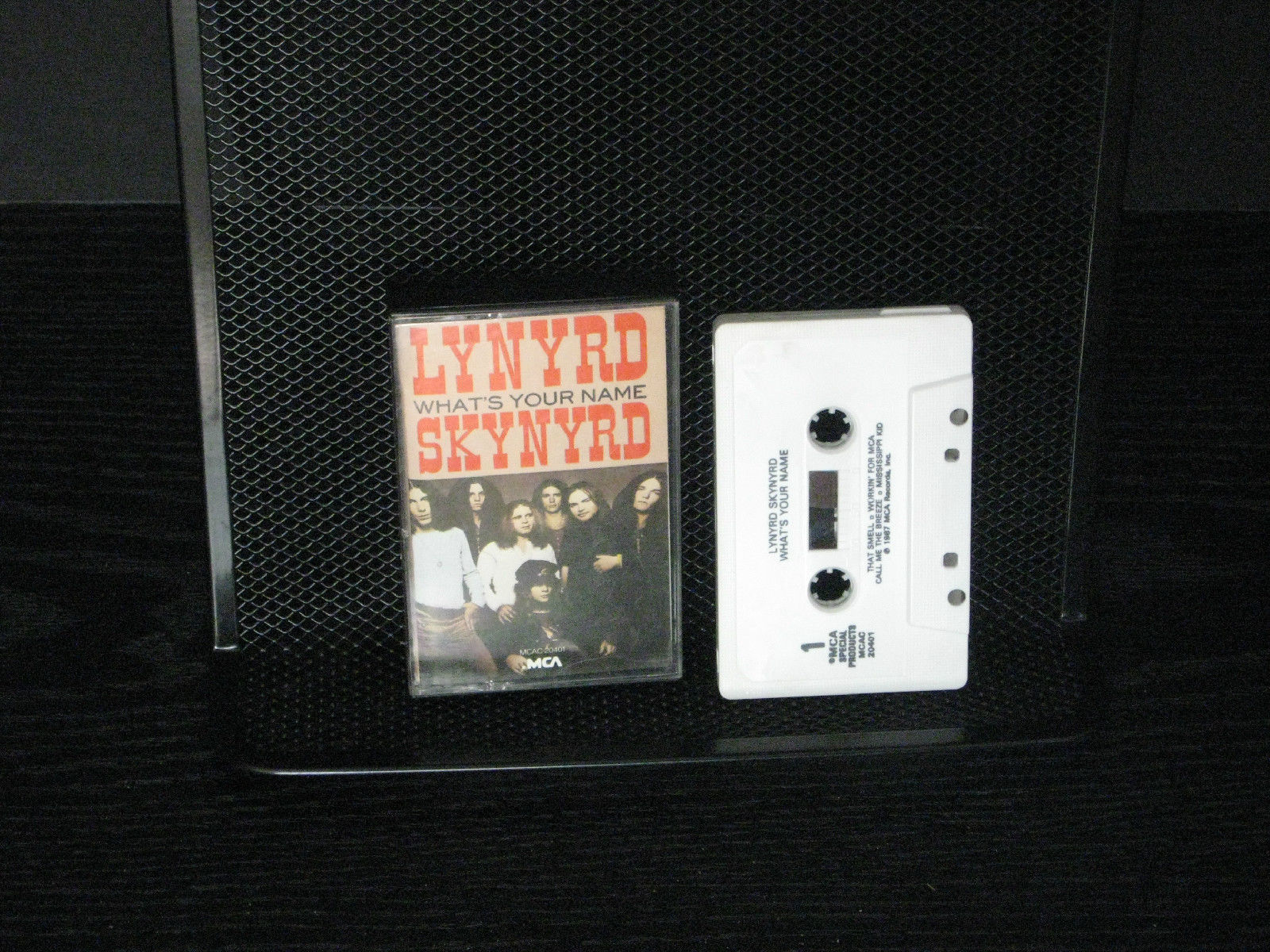 What's Your Name by Lynyrd Skynyrd (Cassette, Mar-1997, Universal Special...