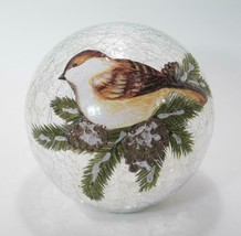 """7"""" LED Crackle Glass Globe with Bird on Branch Tabletop Holiday Decor - $38.56"""