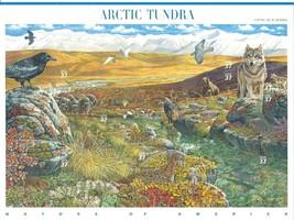 Beautifully USA 2003 SC#3802, Arctic Tundra, Stamps MNH VF Fast free shi... - $14.36