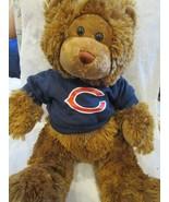 Build A Bear Workshop NFL Chicago Bears Build a Bear Gently Used Rare - $19.99