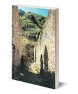 A Guidebook for Better Treasure Hunting ~ Lost & Buried Treasure - $19.95