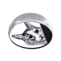 """Peeping Cat Illustration 2"""" Crystal Dome Magnet or Paperweight - $15.99"""