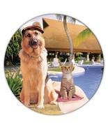 German Shepherd Captain Pool : Gift Coaster Dog Pool Pet K-9 Animal Puppy - £3.57 GBP+