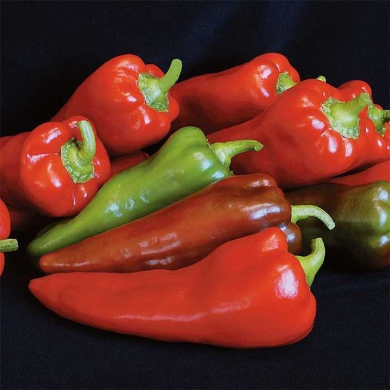 Primary image for SHIP From US, 100 Seeds Carmen Hybrid Sweet Pepper, DIY Healthy Vegetable AM