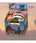 "Cactus Gift Box Arizona Grown 3 Plants 4"" Images Style Pot Southwest Suc... - $18.31"