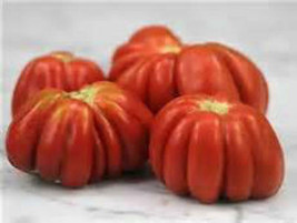 German Red Cushion Tomato! 20 Seeds! UNIQUE SHAPE! COMB. S/H SEE OUR STORE! - $15.48