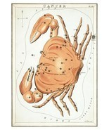 Cancer Constellation; Astrology Star Chart; Zodiac Engraving by Sidney Hall - $26.72+
